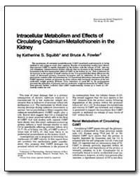 Lntracellular Metabolism and Effects of ... by Squibb, Katherine S.