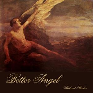 Better Angel by Meeker, Richard