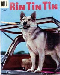 Rin Tin Tin: Issue 13 Volume Issue 13 by Dell Comics