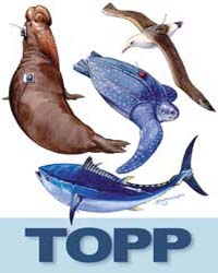 The TOPP Collection : by Public Library of Science