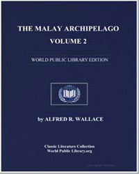The Malay Archipelago, Volume 2 by Wallace, Alfred Russell