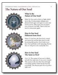 The Nature of Our Soul by