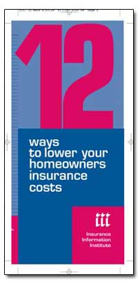 12 Ways to Lower Your Homeowners Insuran... by Government Printing Office