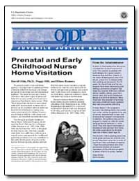 Prenatal and Early Childhood Nurse Home ... by Bilchik, Shay