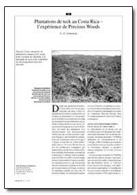 Plantations de Teck au Costa Rica Lexper... by Schmincke, K. H.