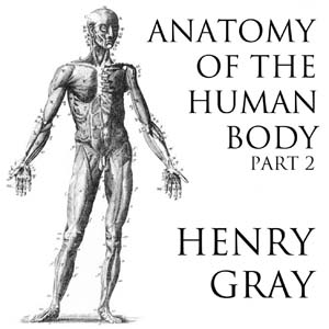 Anatomy of the Human Body, Part 2 (Gray'... by Gray, Henry