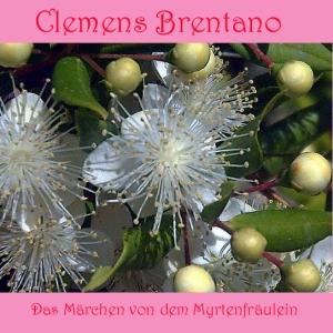 Märchen von dem Myrtenfräulein, Das by Brentano, Clemens