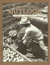 Agricultural Outlook : September 1984 Volume Issue September 1984 by Usda