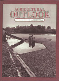 Agricultural Outlook : November 1984 Volume Issue November 1984 by Usda