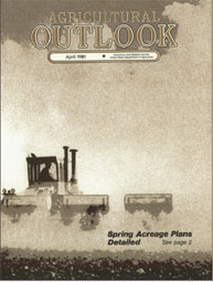 Agricultural Outlook : April 1981 Volume Issue April 1981 by Usda