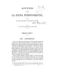 Biblioteca Hispanica : Sketches for Puer... by Gundlach, John
