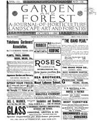 Garden and Forest Volume 3 Issue 136 Oct... by Charles S. Sargent