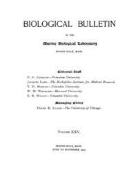 Biological Bulletin : 1913 ; Jun. No. 1 ... Volume Vol. 25 by Schachinger, Carol