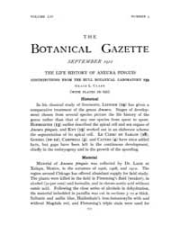 Botanical Gazette : 1912 ; Sep. No. 3 Vo... Volume Vol. 54 by Ruddat, M.