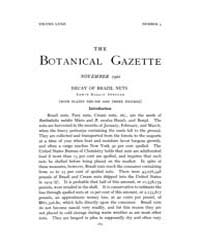 Botanical Gazette : 1921 ; Nov. No. 5 Vo... Volume Vol. 72 by Ruddat, M.
