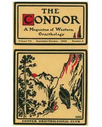 The Condor : 1905 ; Sep.-oct. No. 5 Vol.... Volume Vol. 7 by Patten, Michael