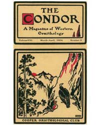 The Condor : 1906 ; Mar.-apr. No. 2 Vol.... Volume Vol. 8 by Patten, Michael