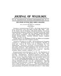 The Journal of Mycology : 1888 Dec No. 1... Volume Vol.23 by