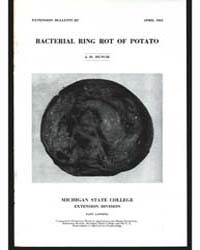 Bacterial Ring Rot of Potato, Document E... by J. H. Muncie