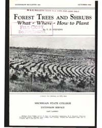 Forest Trees and Shrubs What-where-how t... by T. D. Stevens