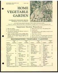 Home Vegetable Garden, Bulletin 529, Doc... by Ray L. Janes