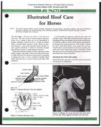 Illustrated Hoof Care for Horses, Docume... by Michigan State University