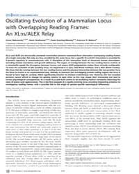 Plos Genetics : Oscillating Evolution of... by Gojobori, Takashi