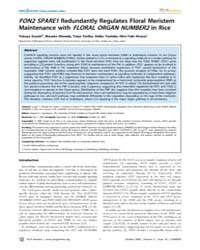 Plos Genetics : Fon2 Spare1Redundantly R... by Copenhaver, Gregory P.