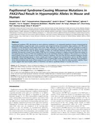 Plos Genetics : Papillorenal Syndrome-ca... by Glaser, Tom