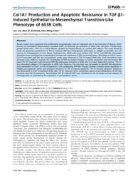 Plos One : Col1A1 Production and Apoptot... by Srinivasula, Srinivasa, M.
