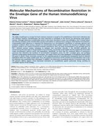 Plos Pathogens : Molecular Mechanisms of... by Simon-loriere Etienne