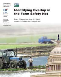 Identifying Overlap in the Farm Safety N... Volume Number 87 by O'donoghue, Erik J.
