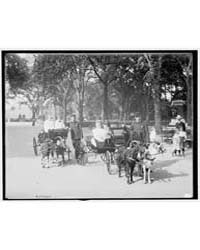 Central Park, Goat Carriages in the Park... by Library of Congress