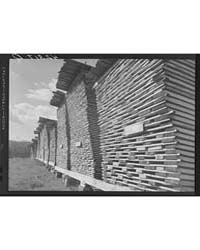 Hurricane Timber Ledyard, Connecticut, P... by Library of Congress