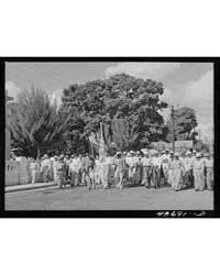 Yabucoa, Puerto Rico (Vicinity) Processi... by Library of Congress