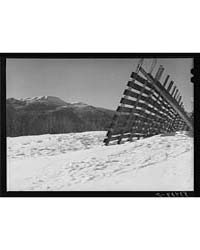 Snow Fence Near Stowe, Vermont, Photogra... by Library of Congress