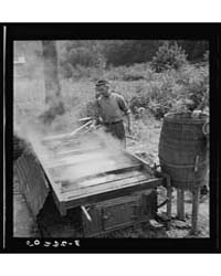 Sugarcane Juice Drains from Barrel Into ... by Library of Congress