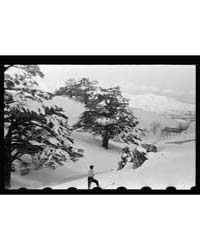 Cedars. Open Mountain Sweep Below the Ce... by Matson Photo Service