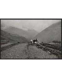 Sikkim, Ploughing Rice Terraces ; Alice ... by Kandell, Alice S.