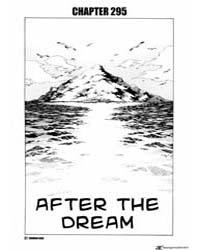 Shaman King 295 : 295 Volume Vol. 295 by Hiroyuki, Takei