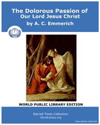 The Dolorous Passion of Our Lord Jesus C... by Emmerich, A. C.