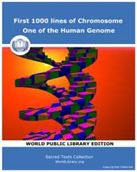 First 1000 Lines of Chromosome, One of t... by Classic Sacred Texts