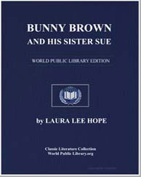 Bunny Brown and His Sister Sue by Lee Hope, Laura