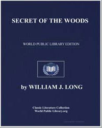 Secret of the Woods by Long, William J.