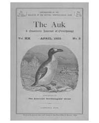 The Auk : 1903 Apr. No. 2 Vol. 20 Volume Vol. 20 by Murphy, Michael