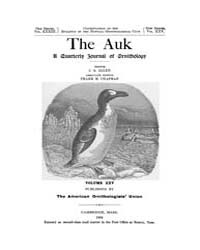 The Auk : 1908 Jan. No. 1 Vol. 25 Volume Vol. 25 by Murphy, Michael