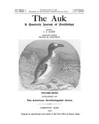 The Auk : 1910 Jan. No. 1 Vol. 27 Volume Vol. 27 by Murphy, Michael